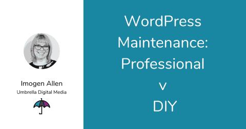WordPress Maintenance Professional v DIY