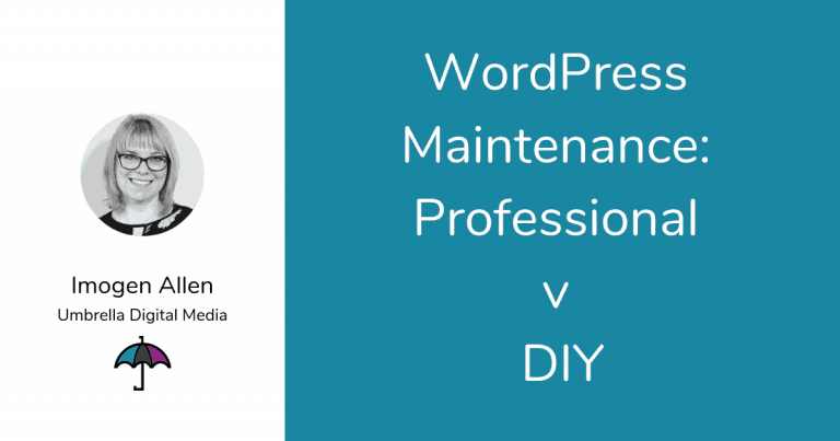 WordPress Maintenance Professional v DIY